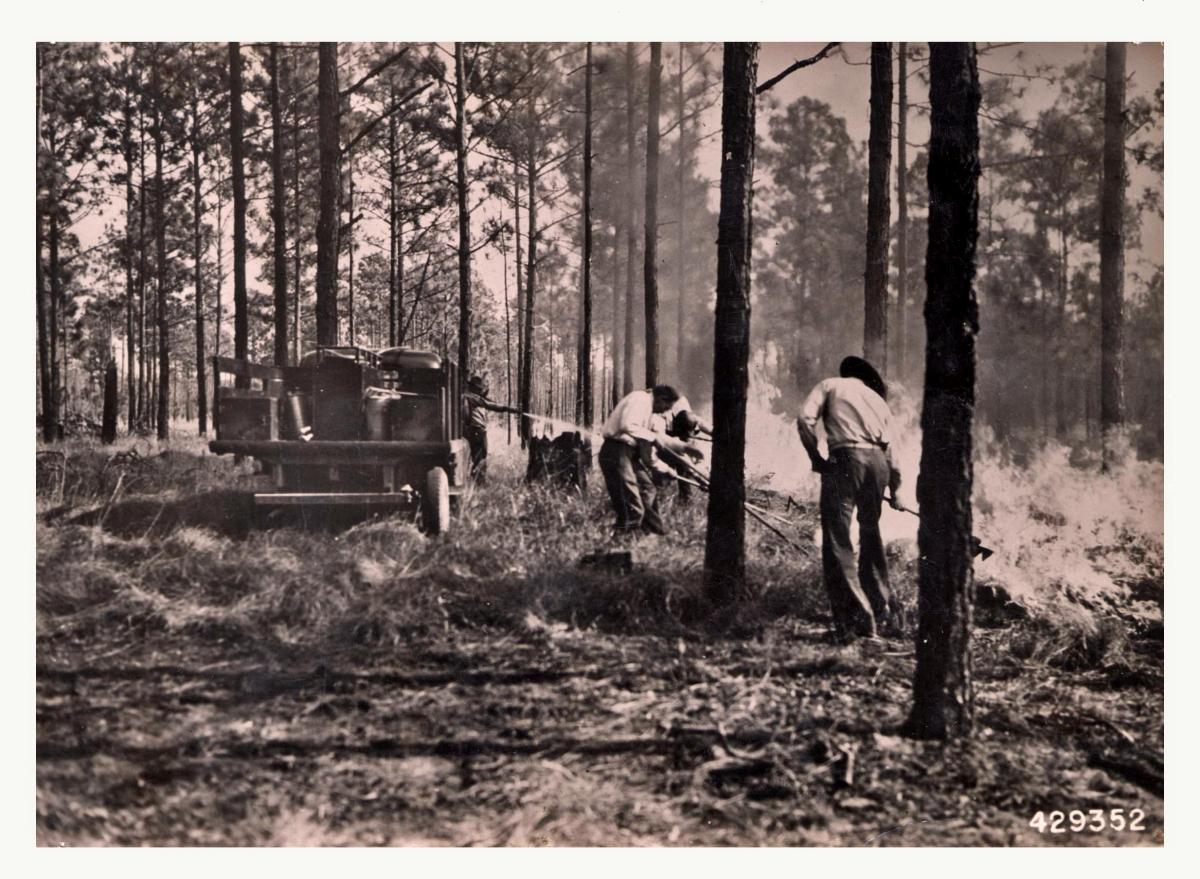 CPS Camp No. 149