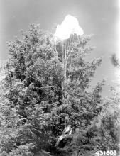 CPS Camp No. 103 Smoke Jumper